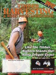 Long - Bighorn Logging