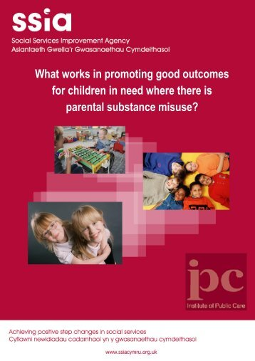 What works in promoting good outcomes for children in need where ...