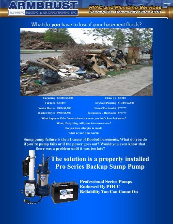The solution is a properly installed Pro Series Backup Sump Pump