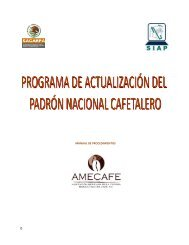 Manual de procedimientos padrón 2011