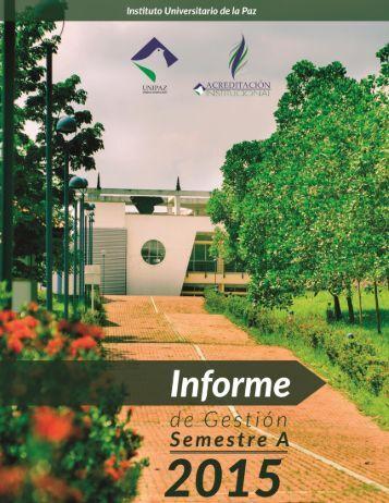 Informe de Gestion A 2015 junio