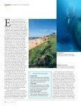 REISE ROATAN & UTILA/HONDURAS - Seite 3