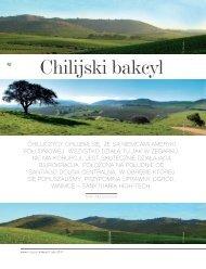 Chilijski bakcyl - Viña VIK, Millahue Chile