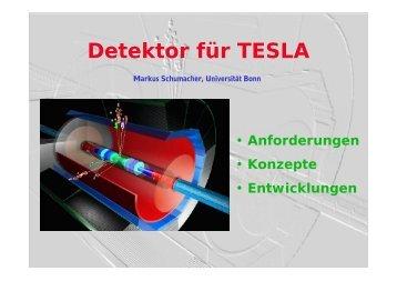Detektor für TESLA - DPG Tagung 2003 in Aachen
