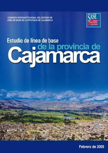 Resultados del Estudio de Línea de Base - Asociación Los Andes ...