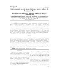Etnobotánica de la «valeriana - Mecanismo de Información de ...