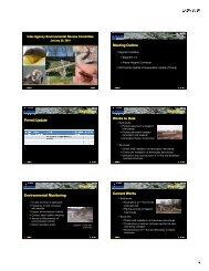 KF IAERC Presentation_2010-01-20.pdf
