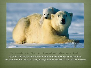 Partnerships in Northern Canadian Indigenous Health Programming