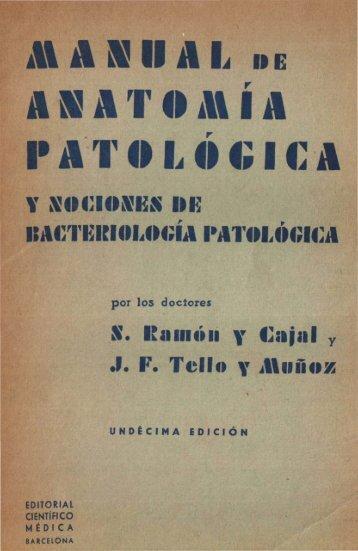 Ramón y Cajal, S.; Tello y Muñoz, J. F. Manual de anatomía ...