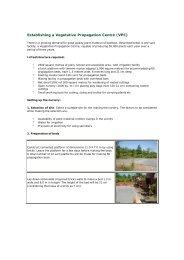Establishing a Vegetative Propagation Centre (VPC)