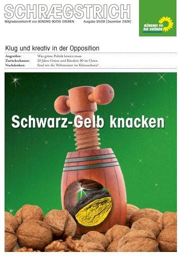 Dezember 2009 - Grüne Schriesheim