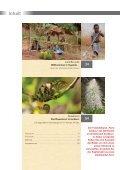 Impressionen aus Uganda - Mondberge.com - Seite 2