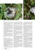 Perhosten pauloissa - Kemia-lehti - Page 3