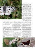 Perhosten pauloissa - Kemia-lehti - Page 4
