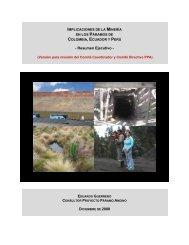 Resumen Ejecutivo - Mineria & Paramos (Version 1)