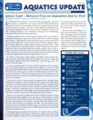 Aquatics In Brief Newsletter - Fall 2008 - Virginia Lake Management ...