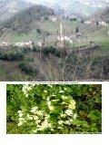Çubuklu Köyü Albümler serisi devam ediyor___ALBÜM__3 - Page 2