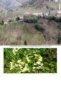 Çubuklu Köyü Albümler serisi devam ediyor___ALBÜM__3 - Page 3