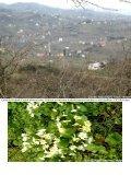 Çubuklu Köyü Albümler serisi devam ediyor___ALBÜM__3 - Page 4