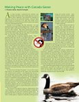 Aquatics Brief In - Virginia Lake Management Company - Page 3