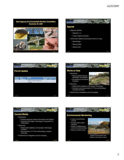 IAERC Presentation_2009-11-25.pdf