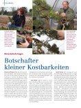 JoURNAl - Bad Oeynhausen - Seite 6
