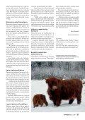 Highland Cattle tekee arvokasta luonnonhoitotyötä - Maaseudun ... - Page 2
