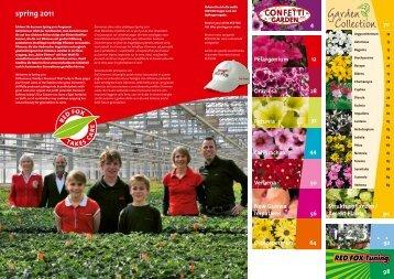red fOx Trio Confetti Garden Mix