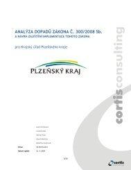 ANALÝZA DOPADŮ ZÁKONA Č. 300/2008 Sb. - Egovernment
