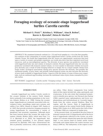 Foraging ecology of oceanic-stage loggerhead turtles Caretta caretta