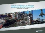 Rapport - CSMO - Final (avec annexes).pdf - Arpac