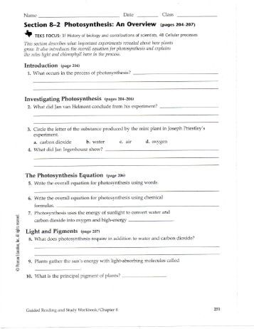 Printables Photosynthesis Worksheet Answers photosynthesis an overview worksheet answer key intrepidpath 8 2 nnhsbergbio