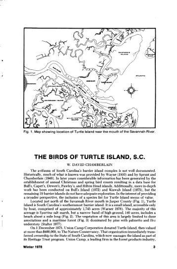 THE BIRDS OF TURTLE ISLAND, S.C. - The Carolina Bird Club