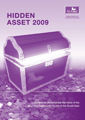 RAISE Hidden Asset 2009 - York Consulting