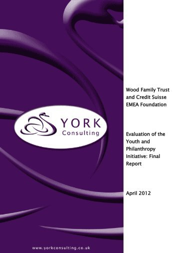 Youth and Philanthropy Initiative: Final Report - York Consulting