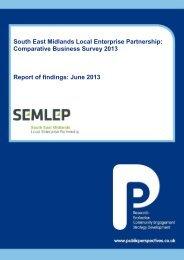 SEMLEP Comparative Business Survey 2013 - South ...