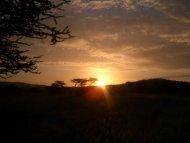 ケニア・首都ナイロビにおける ろう者の経済活動領域 ... - Arsvi.com