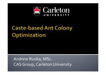 CACO: Colony-based Ant Colony Optimization