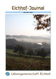 Ausgabe 31, November 2008, PDF, 3,54 MB - Lebensgemeinschaft ...