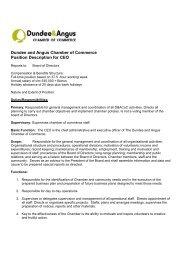 Chief Executive Job Description - Hays