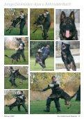 Ajax v. Röhnsaler Bach - Deutsche Schäferhunde von Tjärnshaget - Seite 2