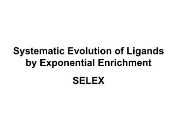 Systematic Evolution of Ligands by Exponential ... - Eurasnet.info