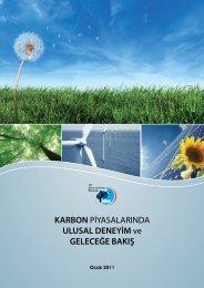 Karbon Piyasalarında Ulusal Deneyim ve Geleceğe Bakış - Enerji ...