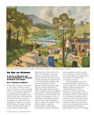 An Eye on Arizona - dart international magazine