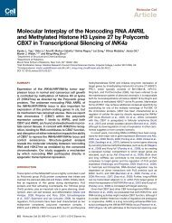 Molecular Interplay of the Noncoding RNA ANRIL and ... - Ejcho.info