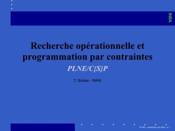 P - PLNE - Contraintes et RO