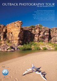OUTBACK PHOTOGRAPHY TOUR - Ewen Bell