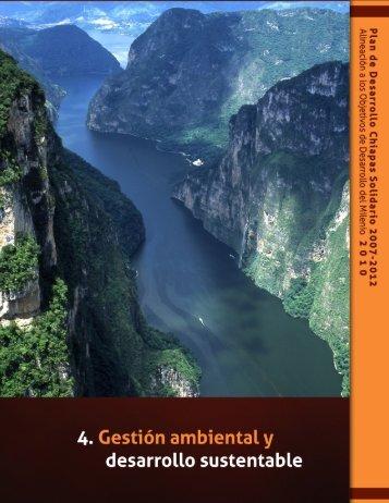 Eje 4. Gestión Ambiental y Desarrollo Sustentable