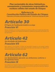 Artículo 30 Artículo 42 Artículo 62