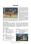 ROTHIRSCH 2012 - Seite 2